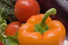 Frisches, nasses Gemüse. stockfotografie