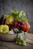 Frisches organisches Erzeugnis vom Garten Lizenzfreie Stockfotografie