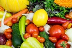 Frisches organisches Gemüse Stockbild