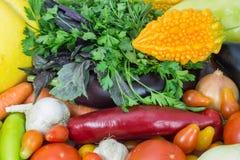 Frisches organisches Gemüse Lizenzfreie Stockbilder