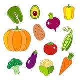 Frisches organisches Gemüse der Ikonen der gesunden Diät Lizenzfreie Stockfotos