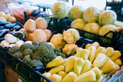 Frisches organisches Gemüse und Früchte im Verkauf am lokalen Landwirtsommermarkt draußen Gesundes Lebensmittelkonzept stockfotografie