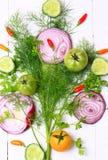 Frisches organisches Gemüse und Kräuter Stockbilder
