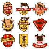 Frisches Rindfleisch des Bauernhofes Stockfoto