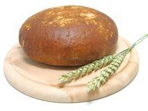 Frisches rundes Brot mit Weizen Stockbilder