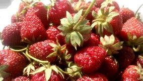 Frisches saftiges Erdbeerfoto Stockbild