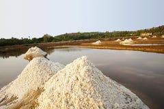 Frisches Salz in der traditionellen Salzpfanne, Nerul Bardez, Goa lizenzfreie stockbilder