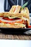 Frisches und köstliches Sandwich mit Toastern Lizenzfreies Stockfoto