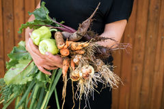 Frisches vegetables Stockfoto