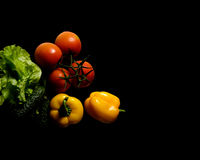 Frisches vegetables Stockbild