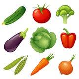 Frisches vegetables Gemüseikone Lebensmittel des strengen Vegetariers Gurke, Tomate, Brokkoli, Aubergine, Kohl, Pfeffer, Erbsen,  lizenzfreie abbildung