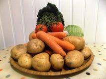 Frisches Vegtables stockbild