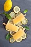Frisches Zitroneneis am stiel lizenzfreies stockbild