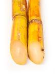 Frisches Zuckerrohr Stockfotografie