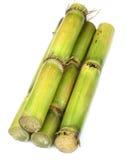 Frisches Zuckerrohr Lizenzfreies Stockbild
