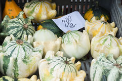Frischgemüse auf Landwirtmarkt Lizenzfreie Stockfotografie