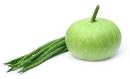 Frischgemüse – Flaschenkürbis und Moringa lizenzfreies stockfoto