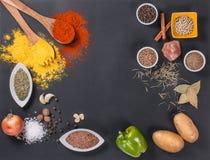 Frischgemüse, Gewürze und Kräuter zerstreuten auf dunklen Hintergrund Natürliche und Biobestandteile für das Kochen des Kopienrau lizenzfreie stockfotos
