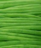 Frischgemüse - grüne Bohnen Stockfoto