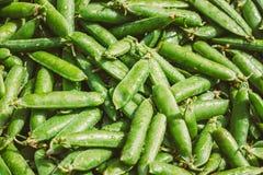 Frischgemüse-organischer grüne Bohnen-Hintergrund Lizenzfreie Stockfotos