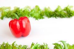 Frischgemüse - süßer roter Pfeffer und Blätter von frillis Pfeffer, Rot, Gelb, Orange, grün Lizenzfreie Stockfotos