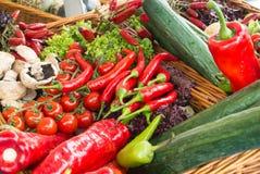 Frischgemüse: Tomaten, Gurken, Kopfsalat, Pfeffer, Champignons im Korb am Straßenbauernhofmarkt Lizenzfreie Stockfotografie
