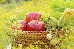 Frischgemüse und Apfel Lizenzfreie Stockfotografie