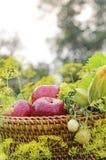 Frischgemüse und Apfel Lizenzfreie Stockfotos