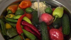 Frischgemüse und Früchte in der Wanne unter dem fließenden Wasser, Tomaten und Gurken, Pfeffer und Dill groß stock video footage