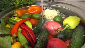 Frischgemüse und Früchte in der Wanne unter dem fließenden Wasser, Tomaten und Gurken, Pfeffer und Dill groß stock video