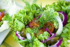 Frischgemüsesalat mit Tomate und Gurke Stockfotos