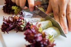 Frischgemüsesalat rollen lassen, gesunde Mahlzeit für Diät Lizenzfreies Stockfoto