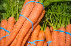 Frischware: Orange Karotten Stockbild