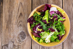 Frise, batavian, radichchio, arugula in a ceramic bowl on a wood Royalty Free Stock Images