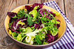 Frise, batavian, radichchio, arugula in a ceramic bowl on a wood Royalty Free Stock Photography