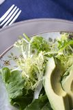 Frisee Avocado Salad Royalty Free Stock Images
