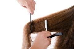 Friseur, der das Haar schneidet Stockfoto