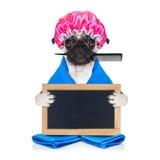 Friseur Groomerhund Lizenzfreie Stockbilder