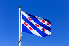 Frisian flag. Waving flag of Friesland, a province in the north of the Netherlands Royalty Free Stock Photography