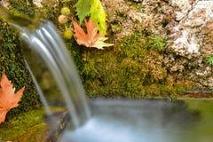 Friskhet och lugn av naturligt vatten royaltyfria foton