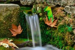 Friskhet och lugn av naturligt vatten arkivfoton