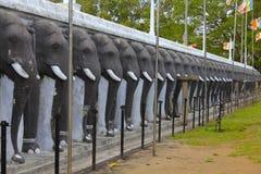 Friso do elefante, Ruvanvelisaya Stupa, Sri Lanka Imagens de Stock