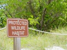 Fristad för Sanibel stranddjurliv Royaltyfri Bild