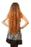 Frisyr från långt lockigt hår från baksidaen Arkivfoton