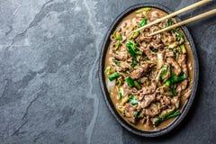 Fritada chinesa da agitação da carne do mongolian na placa do ferro Imagem de Stock Royalty Free