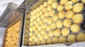 Fritada de los dulces en aceite caliente en confitería almacen de video