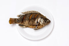 Fritada de pescado fotografía de archivo