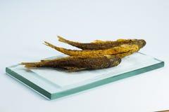 Fritada de pescado Fotografía de archivo libre de regalías