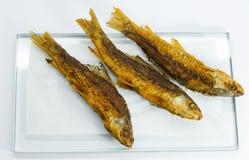 Fritada de pescado Imagenes de archivo