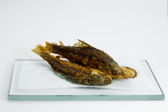 Fritada de pescado Imagen de archivo libre de regalías